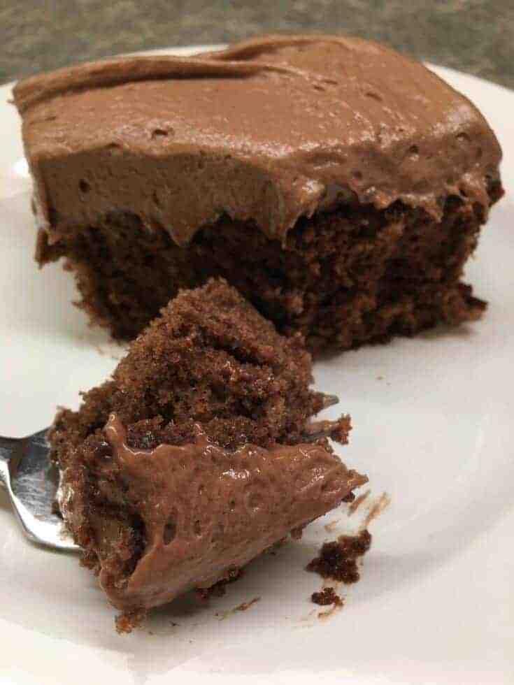 Picture of chocolate cake with frosting on a white plate.