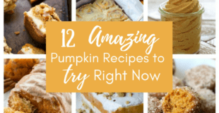 Amazing Pumpkin recipes to try right now