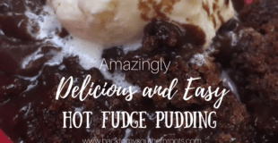 Amazingly Delicious and Easy Homemade Hot Fudge Pudding