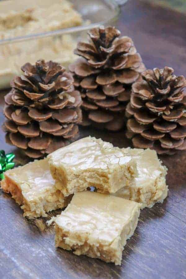 Picture of fudge and pinecones.