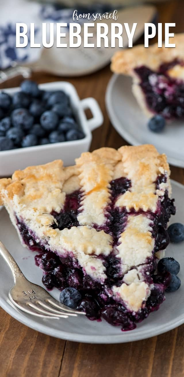 Maine - Blueberry Pie  - Crazy For Crust