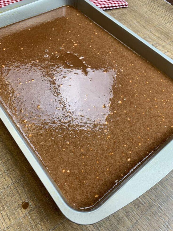 Cake in a Wilton pan