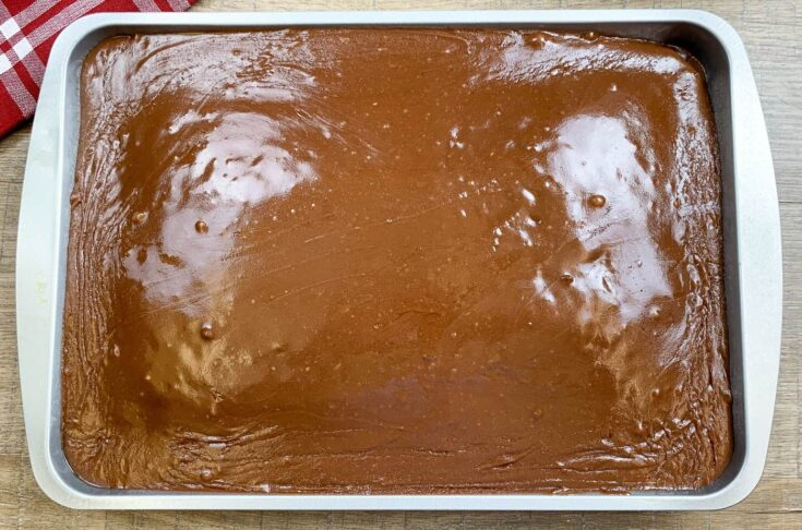 Chocolate frosting on a cake in a Wilton pan