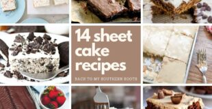 14 sheet cake recipes collage