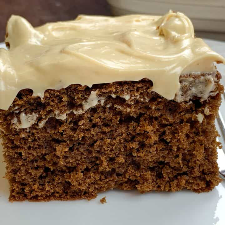 Gingerbread cake with frosting on a plate