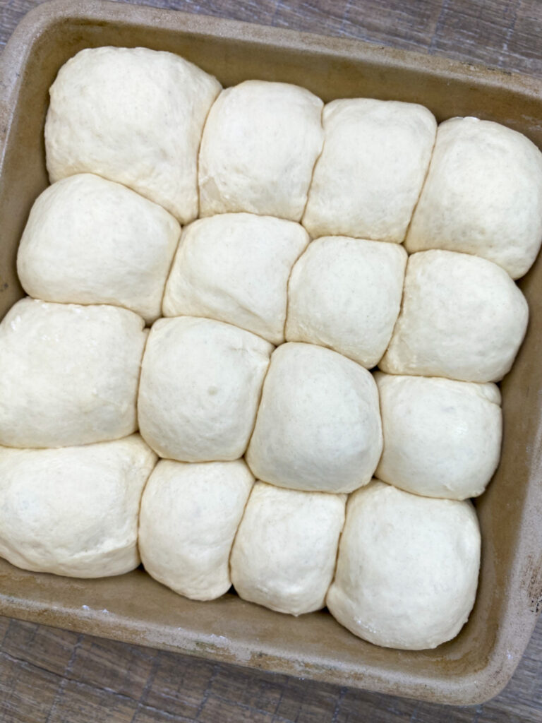 Dinner rolls rising in a baking dish.