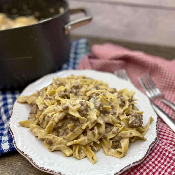 Beef stroganoff on a plate