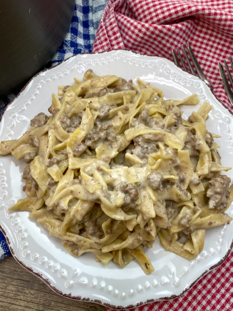 A white plate with beef stroganoff